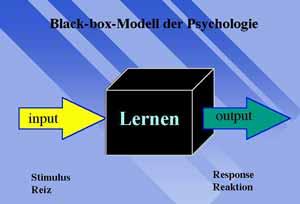 black box modell